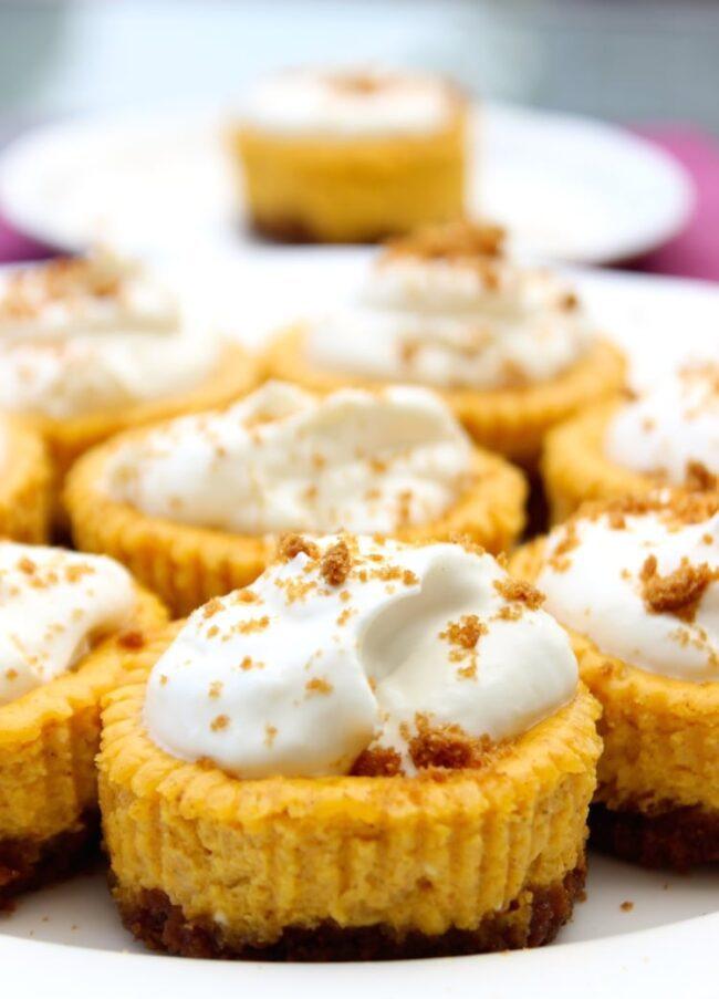 Easiest Mini Pumpkin Cheesecake Bites No Bake Recipe | The ...  |Mini Pumpkin Cheesecake Bites
