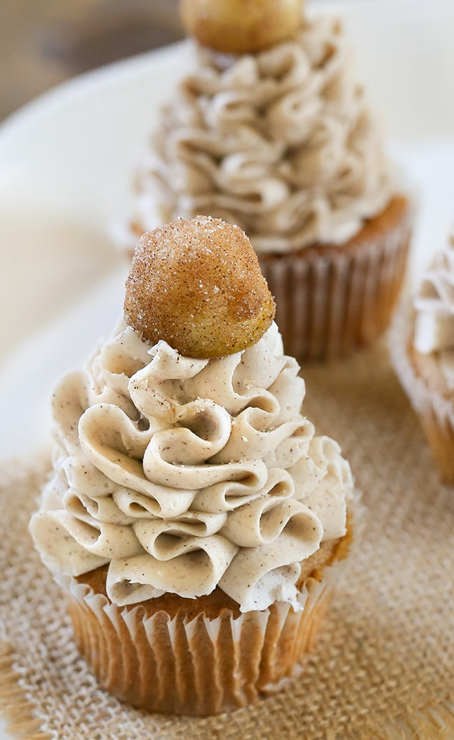 Caramel Apple Cupcakes - Dreamy cinnamon and apple stuffed cupcakes with a Caramel Cinnamon Cream Cheese Frosting and a sugary cinnamon apple on top! These Caramel Apple Cupcakes are the perfect dessert to make fall!