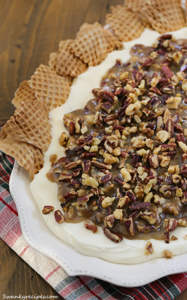 Pecan Praline Dip - Warm brown sugar and butter pecan pralines paired with a Chantilly-based cream dip.  A truly classic southern staple served up for the start of fall. Serve with waffle cones, pretzels or graham crackers.