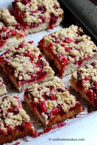 Cranberry Apple Dessert Bars