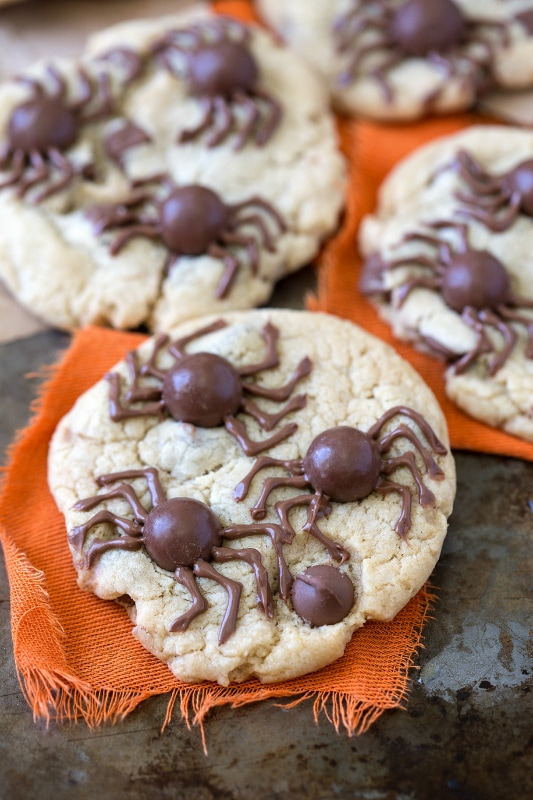 Whopper Spider Cookies