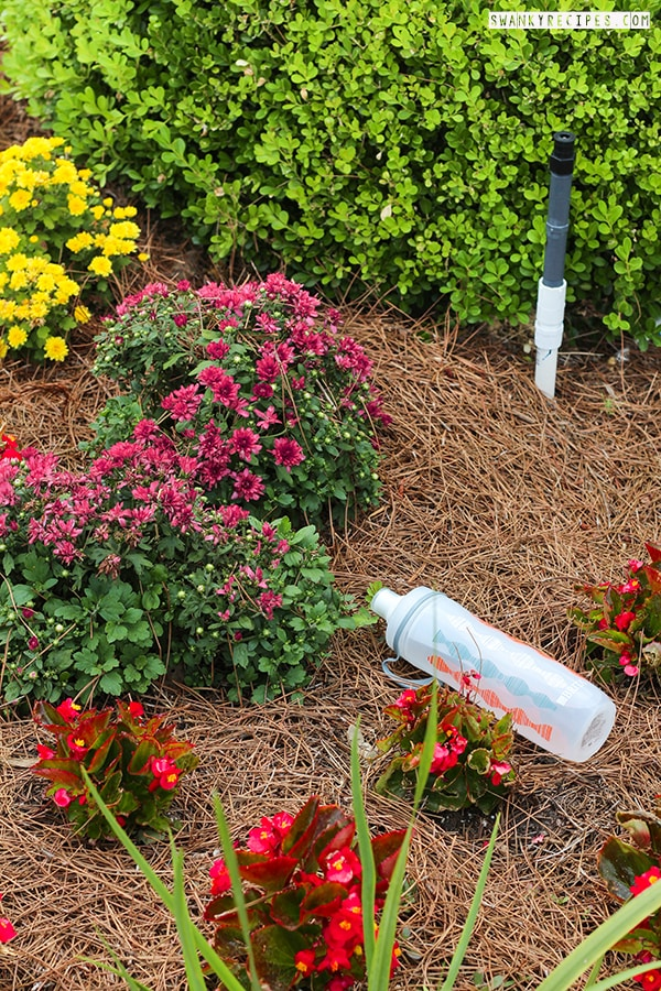 Gardening with Brita Water Bottle