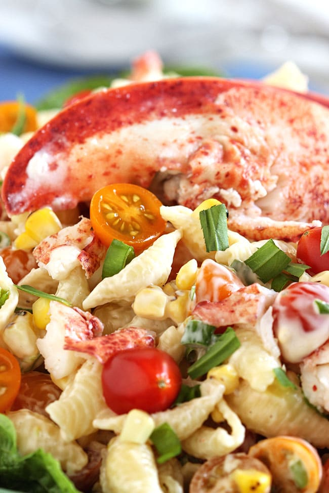 Lobster Pasta Salad - Every summer holiday needs a pasta salad and this Lobster Pasta Salad is by far, one of the best tasting and fulfilling recipes!