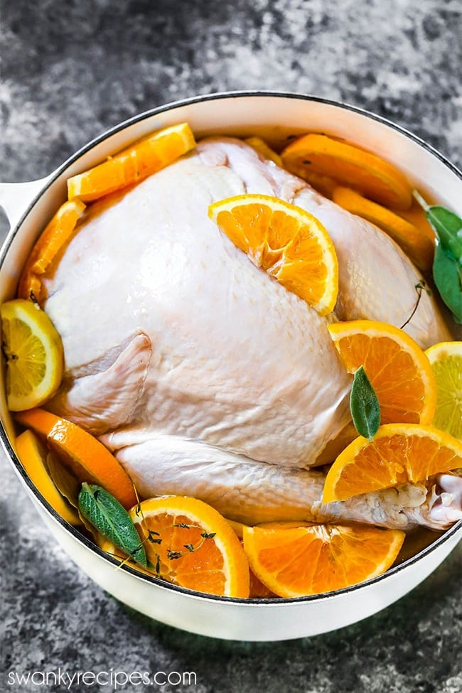 Whole turkey in wet salt brine water solution with sliced oranges, lemons, thyme, sage, rosemary, and bay leaves.