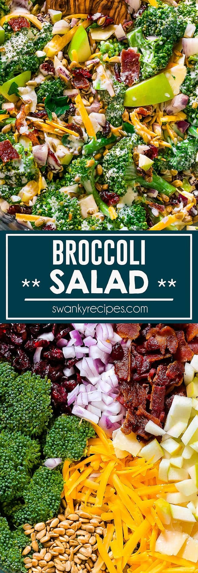 Broccoli Salad - The BEST broccoli salad recipe with healthy, fresh ingredients.