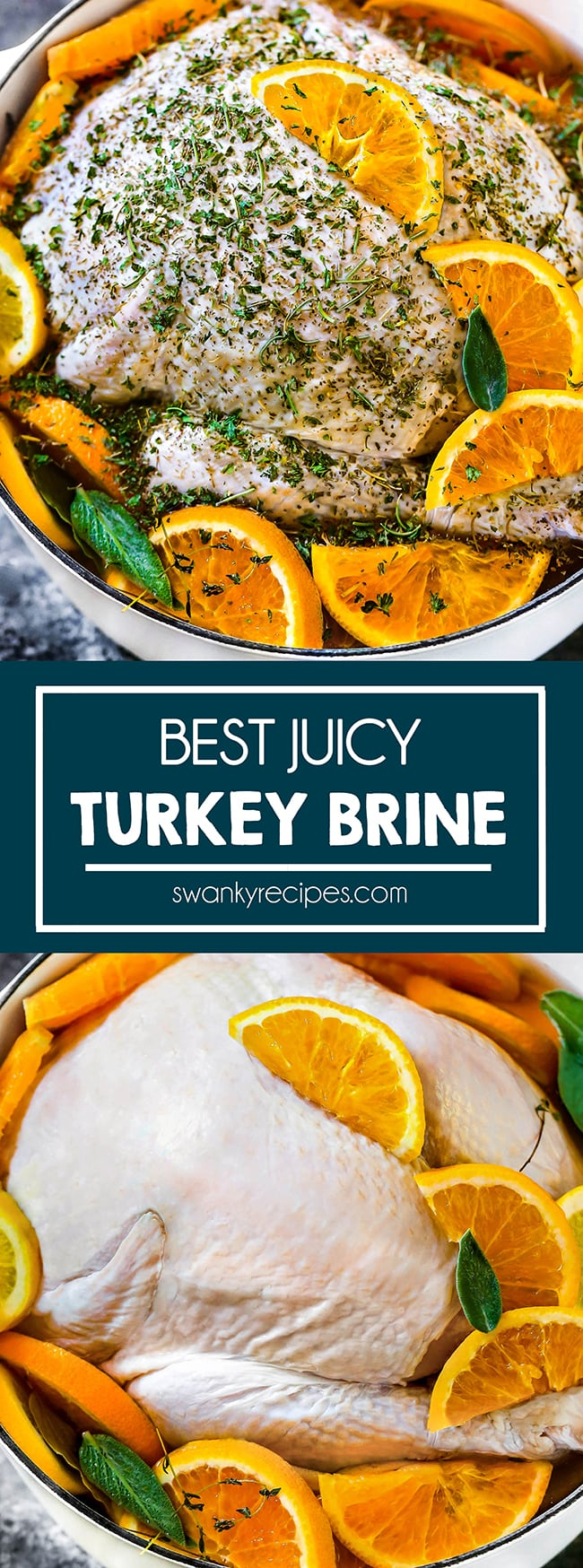 Turkey brine recipe - Whole turkey in a dutch oven with slices of orange and lemon on top and on the sides. Green herbs sprinkled in pot and on top of turkey. Served on a cookie sheet. Text in center in blue border reads Best Juicy Turkey Brine Second photo is of the raw whole turkey in white stock pot with orange slices and a few green herb leaves on top.